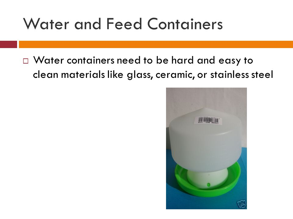 Water and Feed Containers