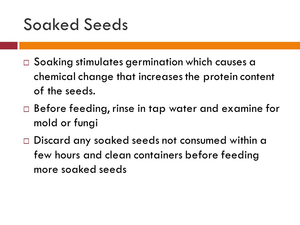 Soaked Seeds Soaking stimulates germination which causes a chemical change that increases the protein content of the seeds.
