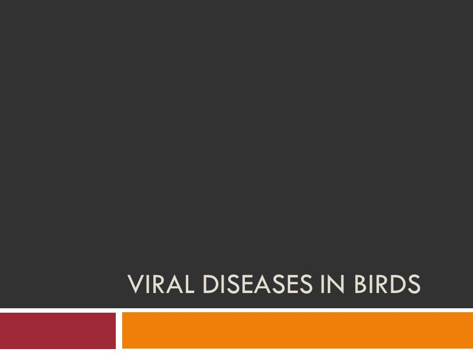 Viral Diseases in Birds