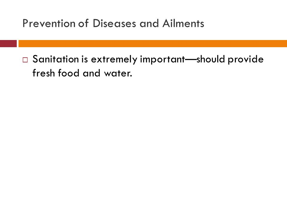 Prevention of Diseases and Ailments