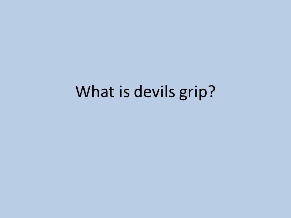 What is devils grip