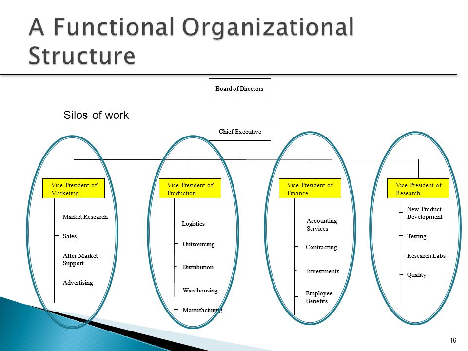 A Functional Organizational Structure