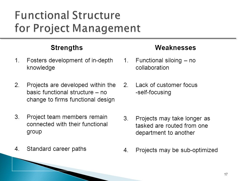 Functional Structure for Project Management