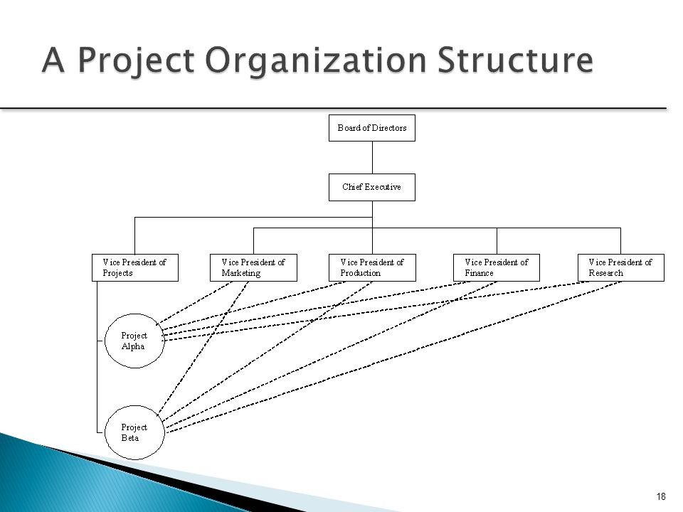 A Project Organization Structure