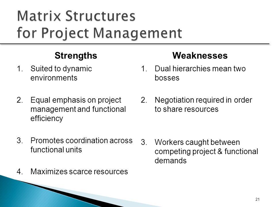 Matrix Structures for Project Management