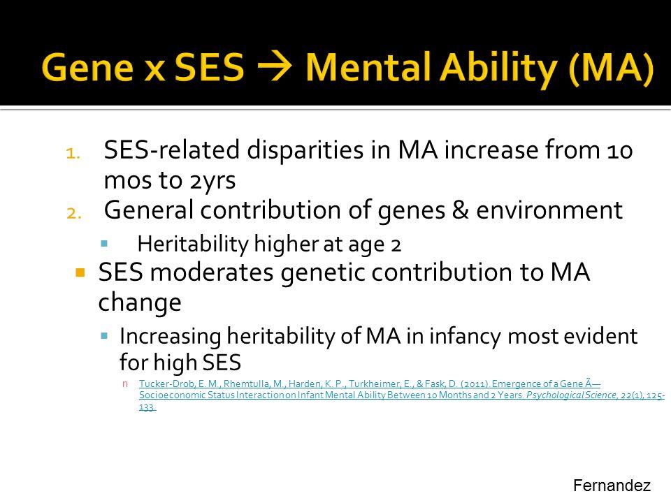 Gene x SES  Mental Ability (MA)