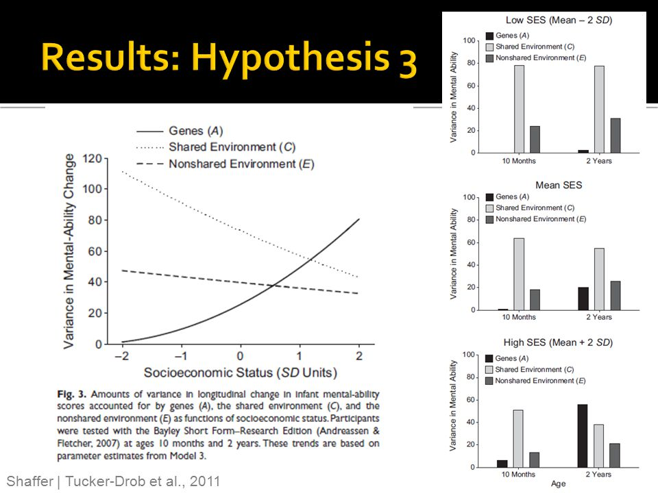 Results: Hypothesis 3 Shaffer | Tucker-Drob et al., 2011