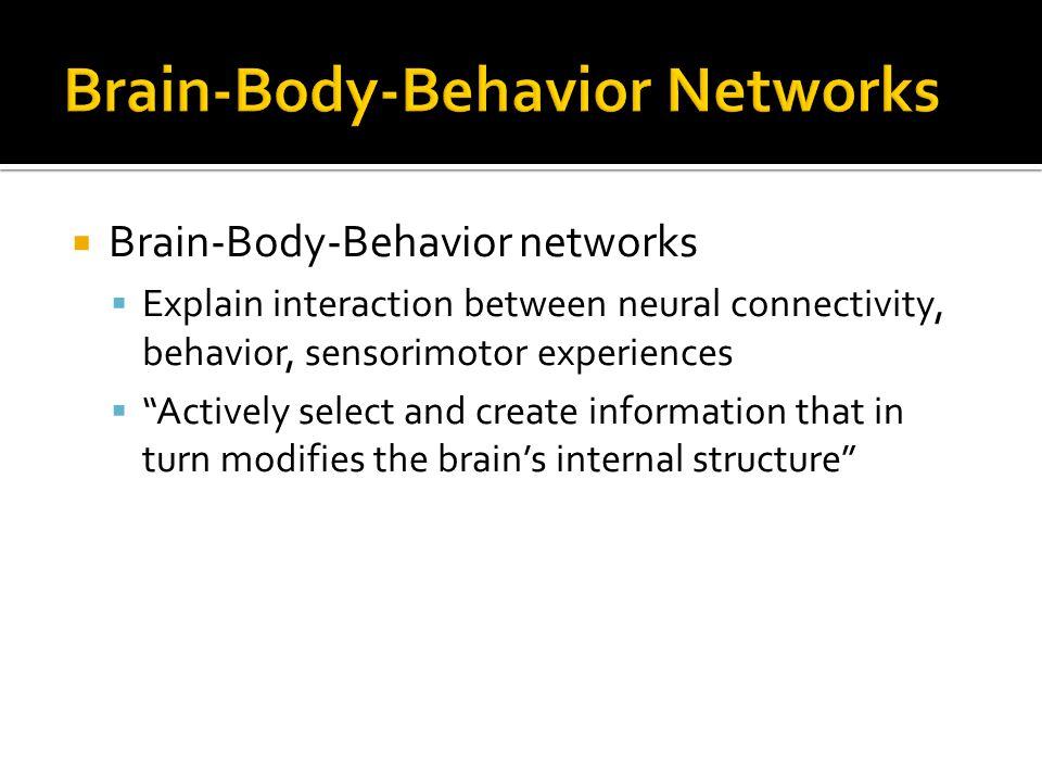 Brain-Body-Behavior Networks