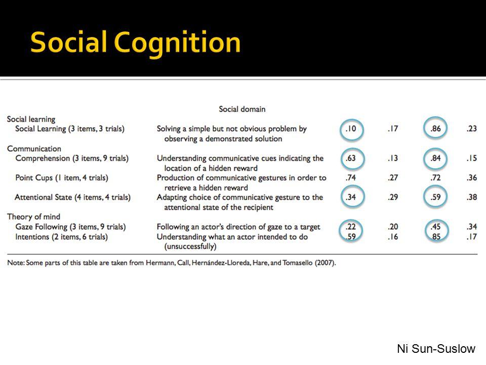 Social Cognition Ni Sun-Suslow