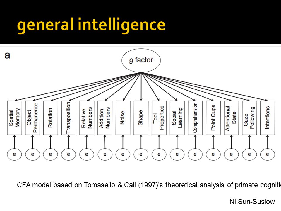 general intelligence Theoretical models used in data analysis.