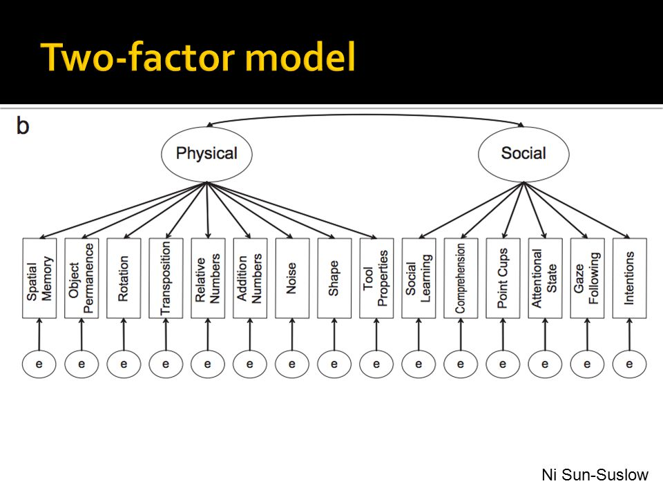 Two-factor model Physical and social factors Ni Sun-Suslow