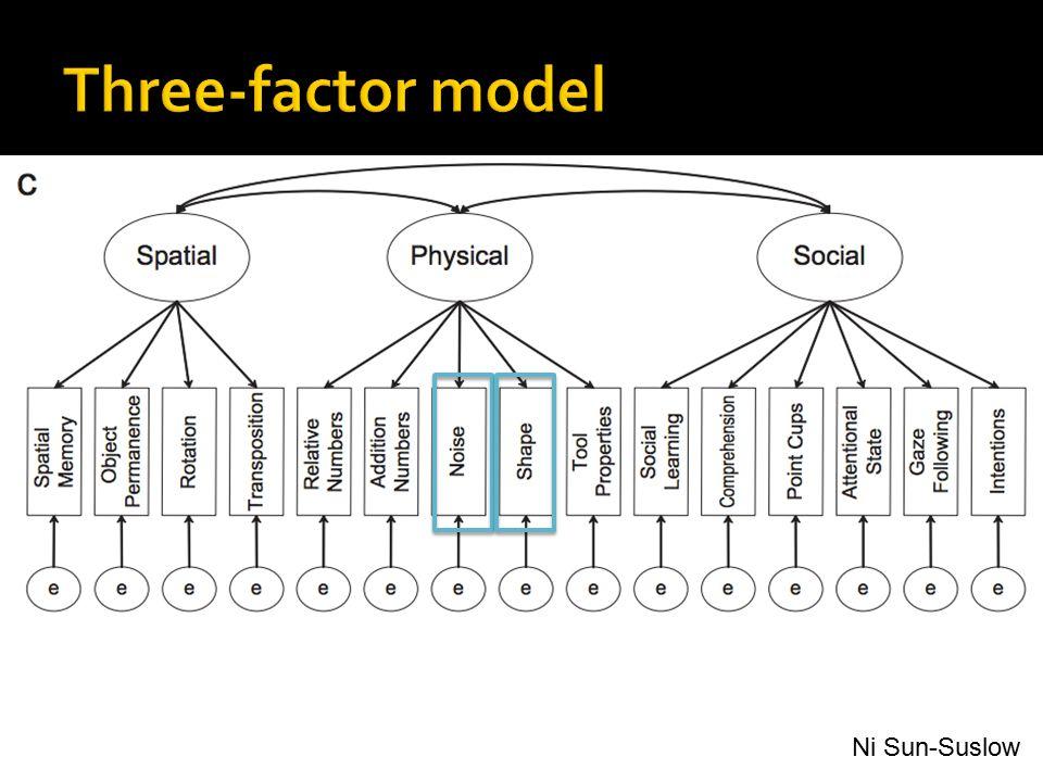Three-factor model Ni Sun-Suslow
