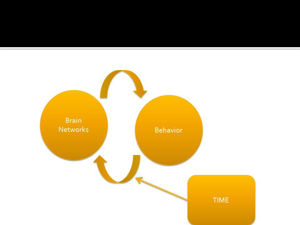 Brain Networks Behavior TIME