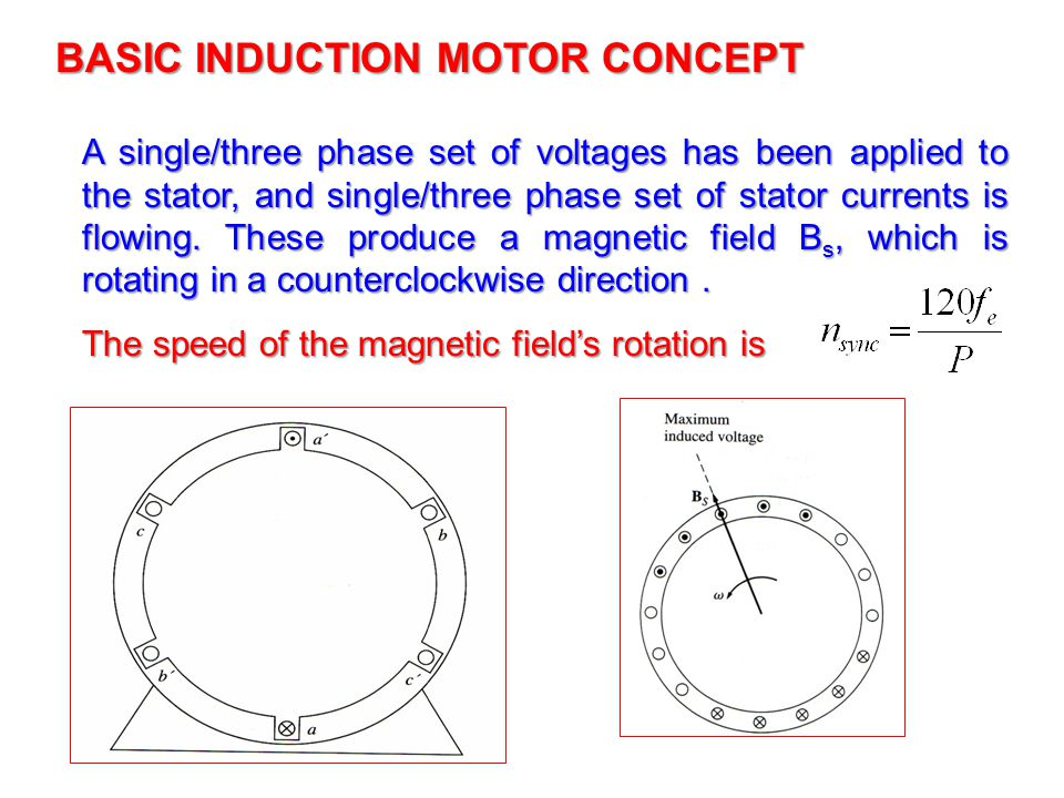 BASIC INDUCTION MOTOR CONCEPT