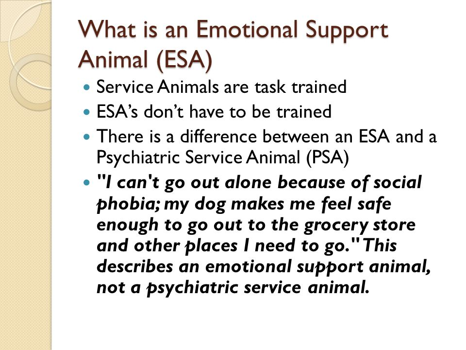 What is an Emotional Support Animal (ESA)