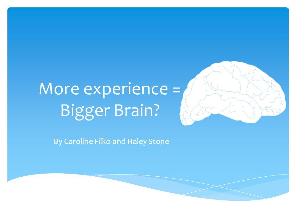 More experience = Bigger Brain