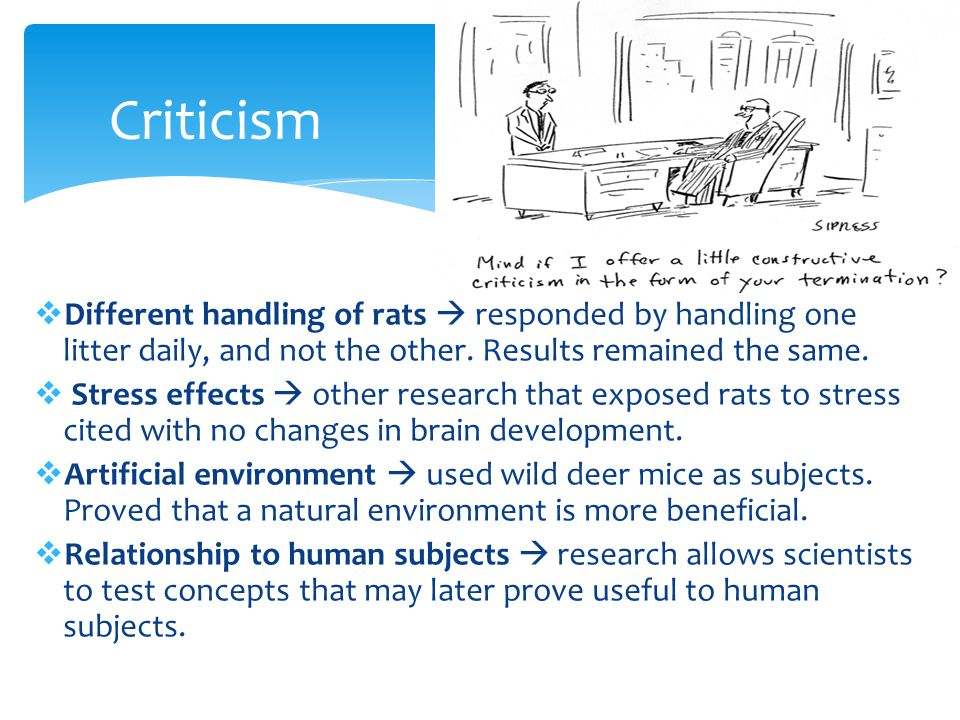 Criticism Different handling of rats  responded by handling one litter daily, and not the other. Results remained the same.