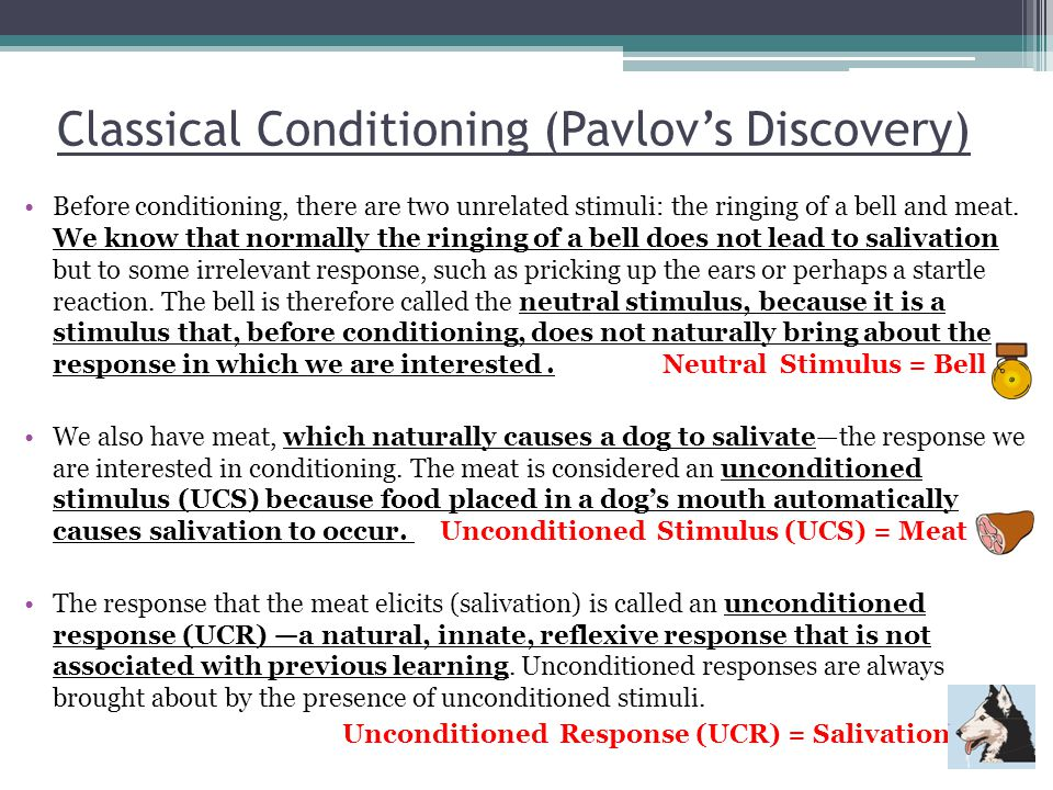 Classical Conditioning (Pavlov's Discovery)
