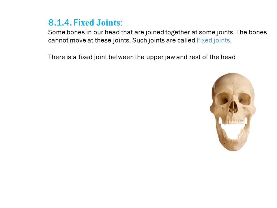 8.1.4. Fixed Joints: Some bones in our head that are joined together at some joints. The bones.
