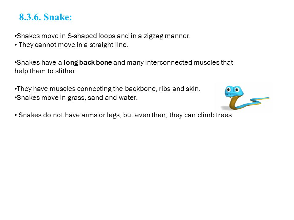 8.3.6. Snake: Snakes move in S-shaped loops and in a zigzag manner.