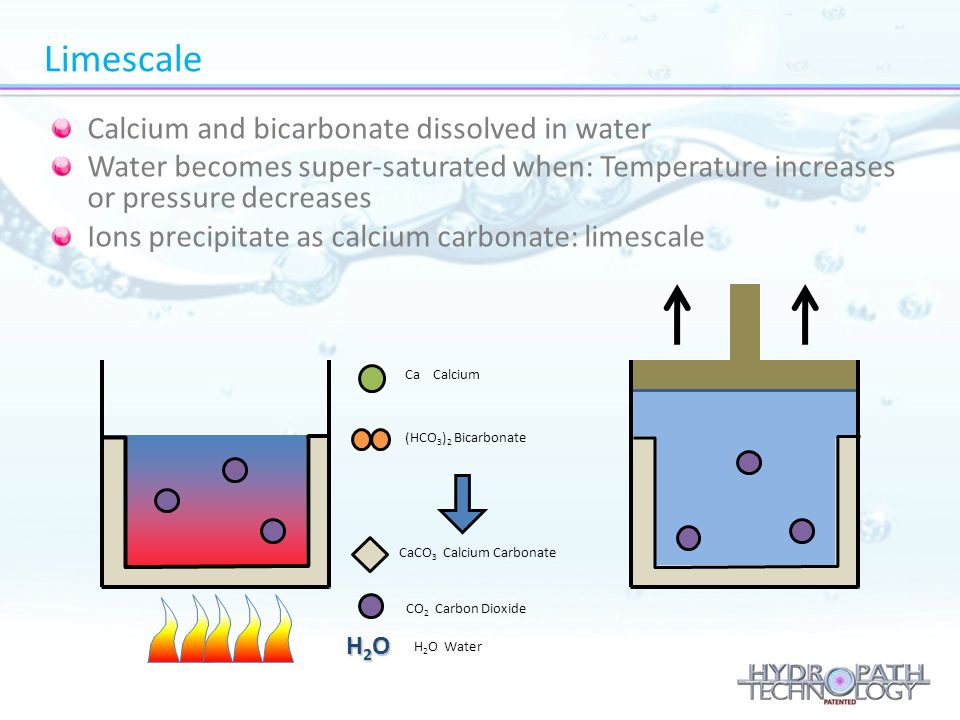 Limescale Calcium and bicarbonate dissolved in water