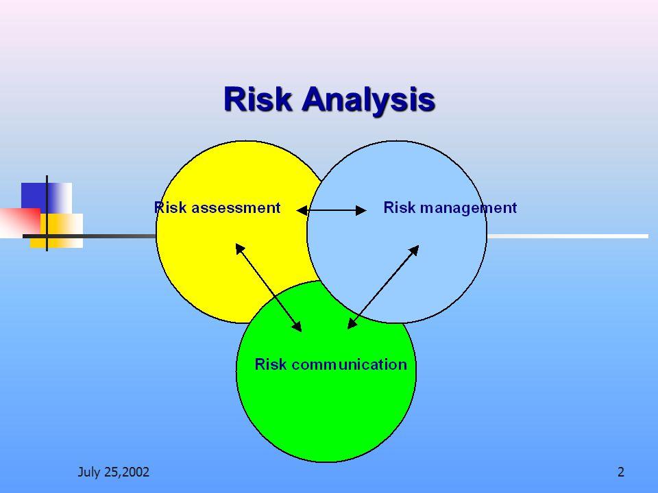 Risk Analysis July 25,2002
