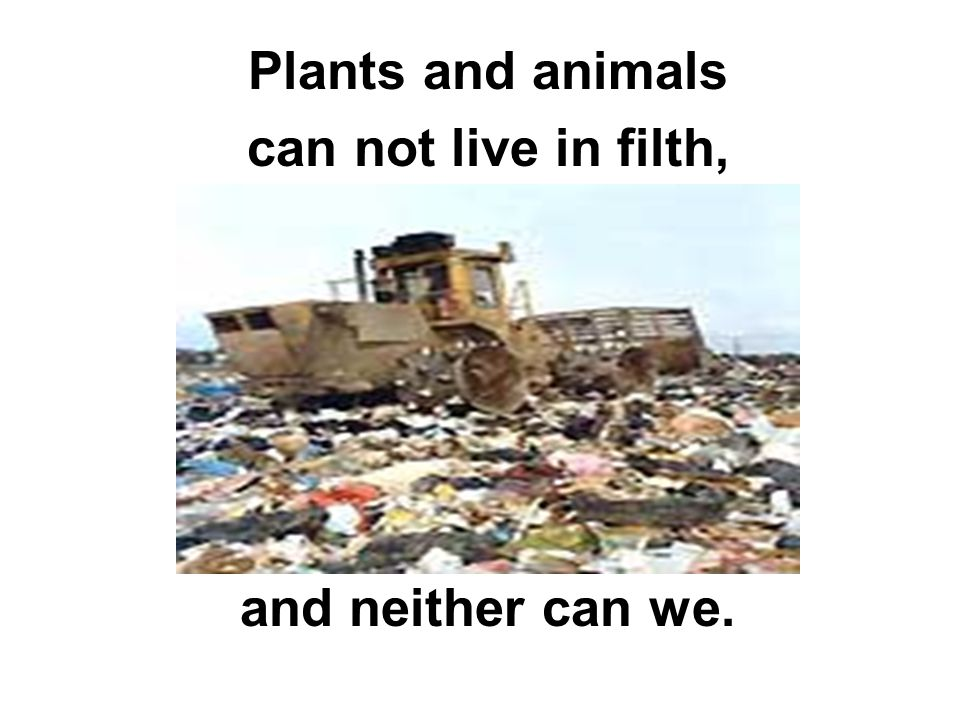 Plants and animals can not live in filth, and neither can we.