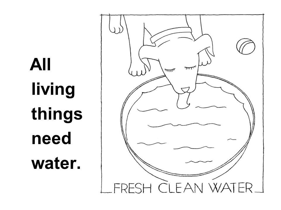 All living things need water.