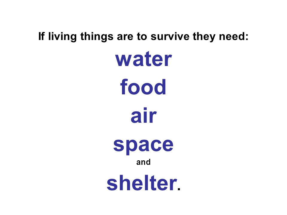If living things are to survive they need: