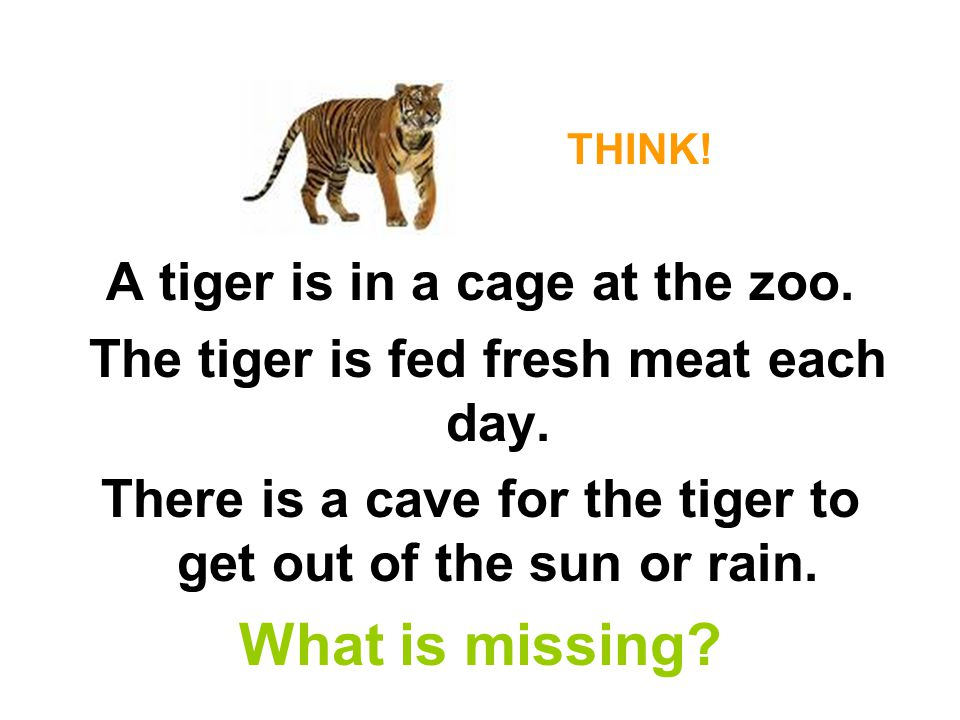 What is missing A tiger is in a cage at the zoo.