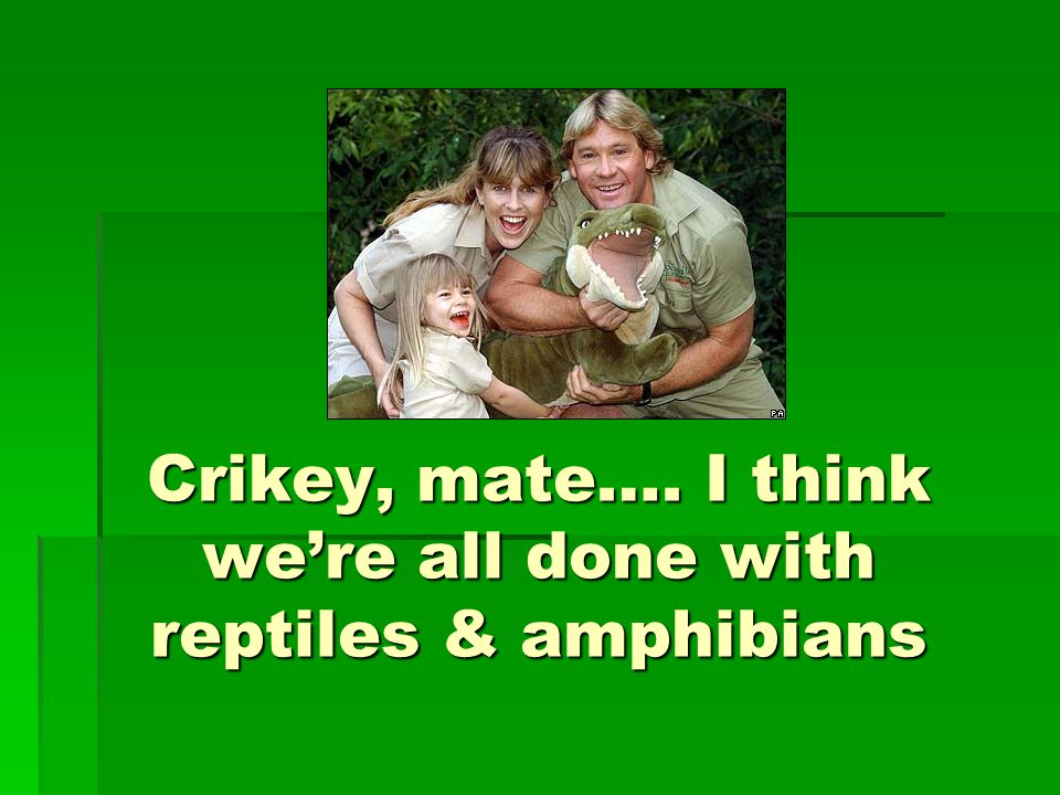 Crikey, mate…. I think we're all done with reptiles & amphibians