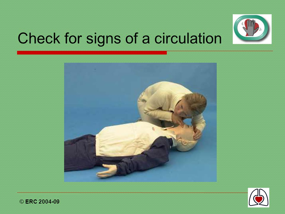 Check for signs of a circulation