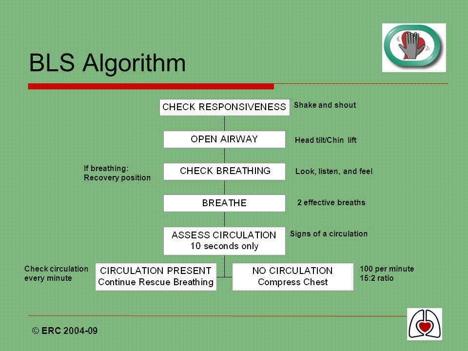BLS Algorithm © ERC Shake and shout Head tilt/Chin lift