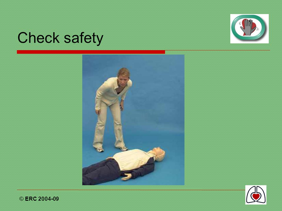 Check safety © ERC