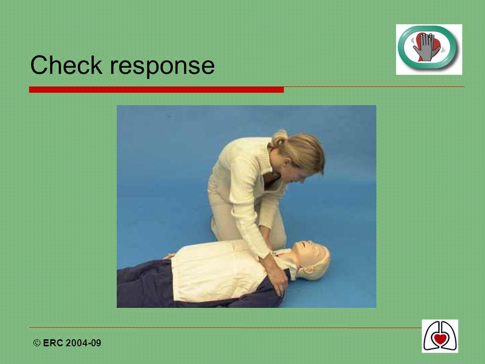 Check response © ERC 2004-09