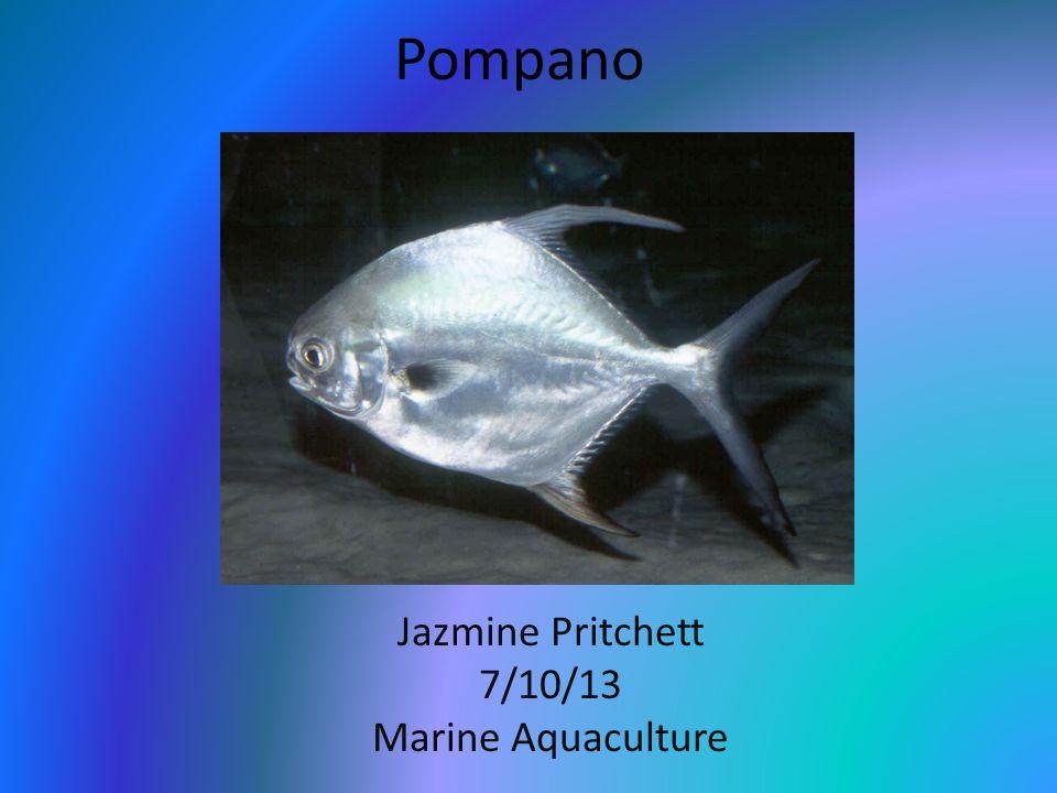 Jazmine Pritchett 7/10/13 Marine Aquaculture