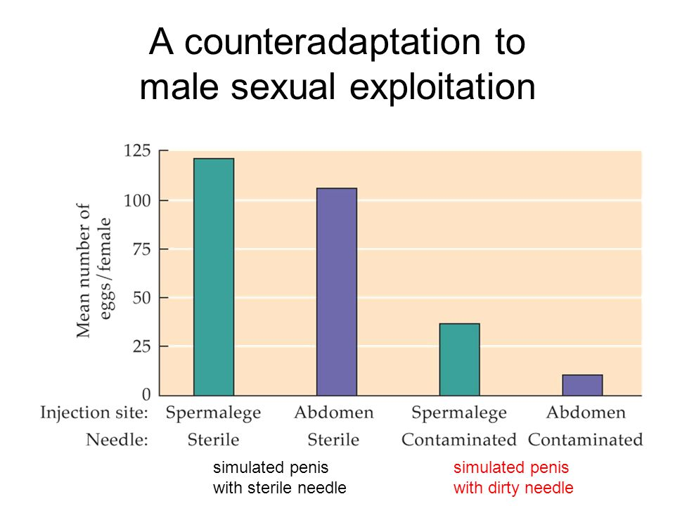 A counteradaptation to male sexual exploitation