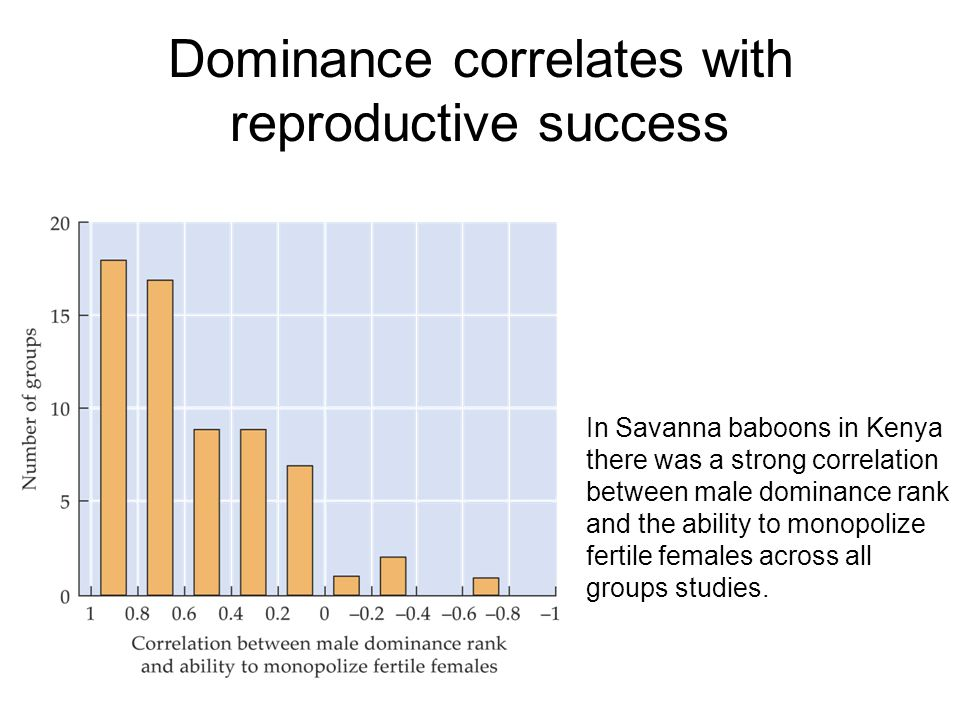 Dominance correlates with reproductive success