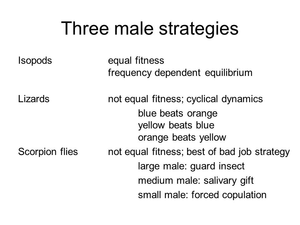 Three male strategies Isopods equal fitness frequency dependent equilibrium. Lizards not equal fitness; cyclical dynamics.