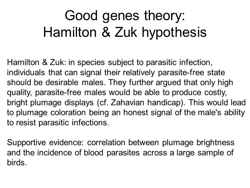 Good genes theory: Hamilton & Zuk hypothesis