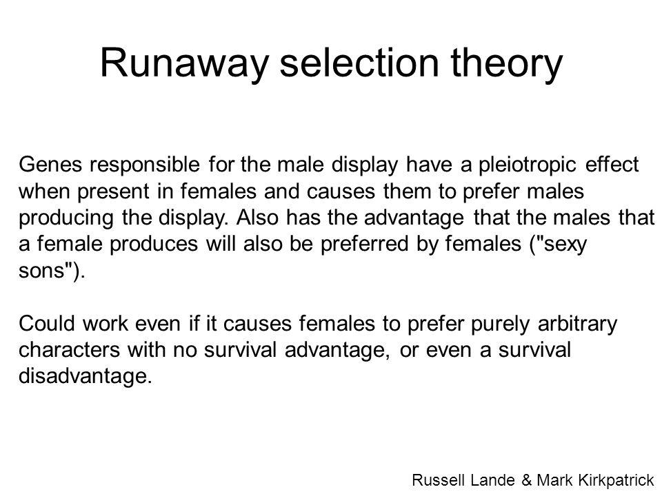 Runaway selection theory