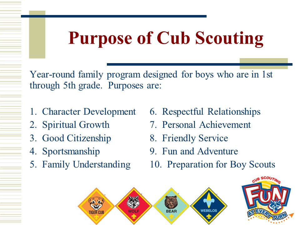 Purpose of Cub Scouting