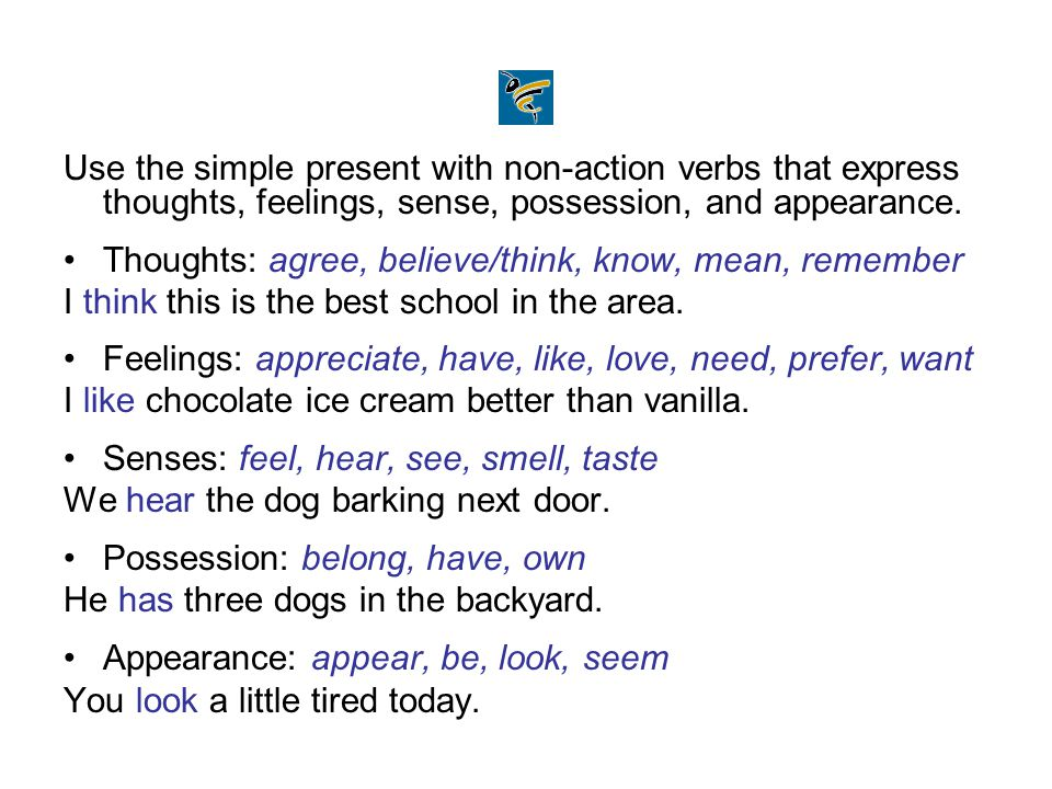 Use the simple present with non-action verbs that express thoughts, feelings, sense, possession, and appearance.