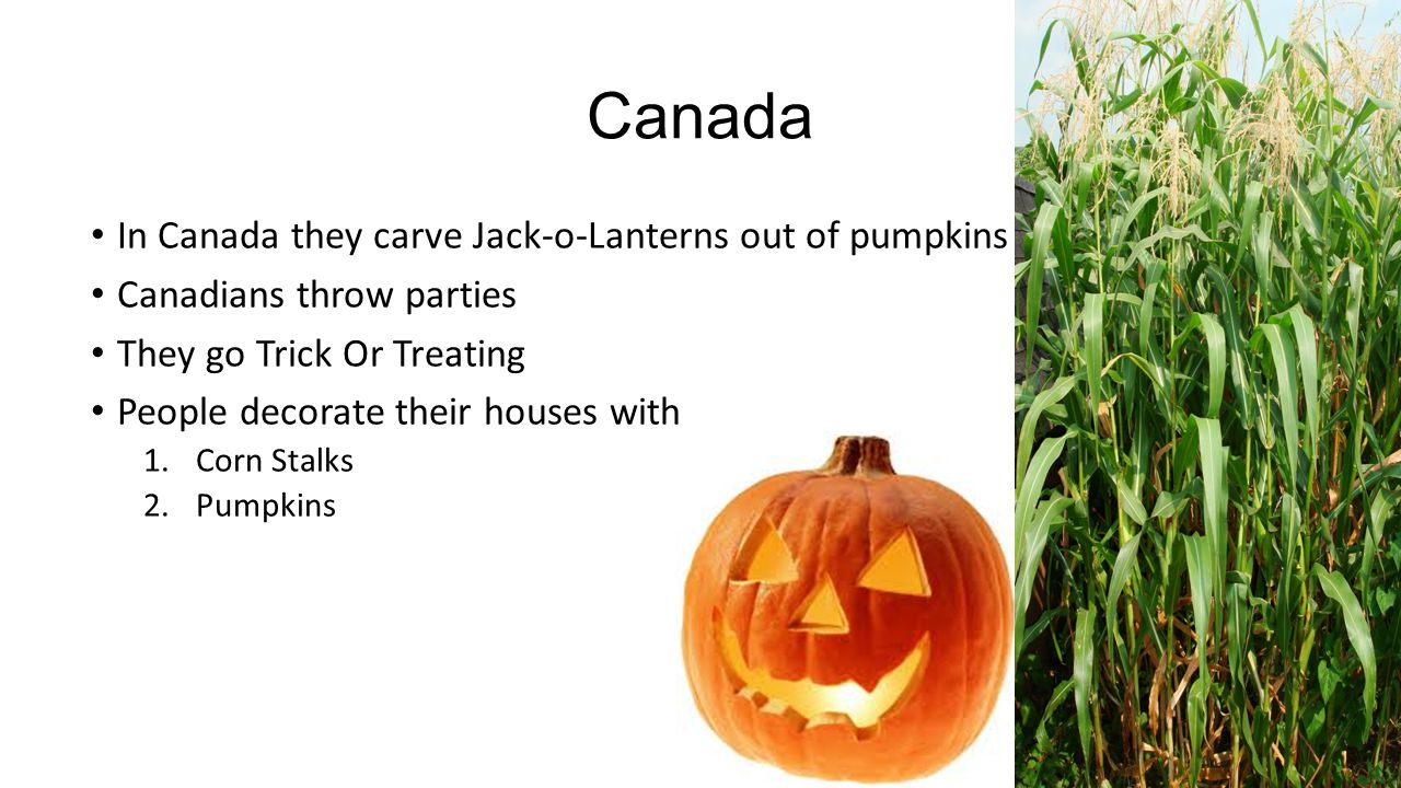 Canada In Canada they carve Jack-o-Lanterns out of pumpkins