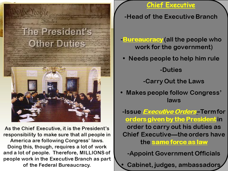 -Head of the Executive Branch