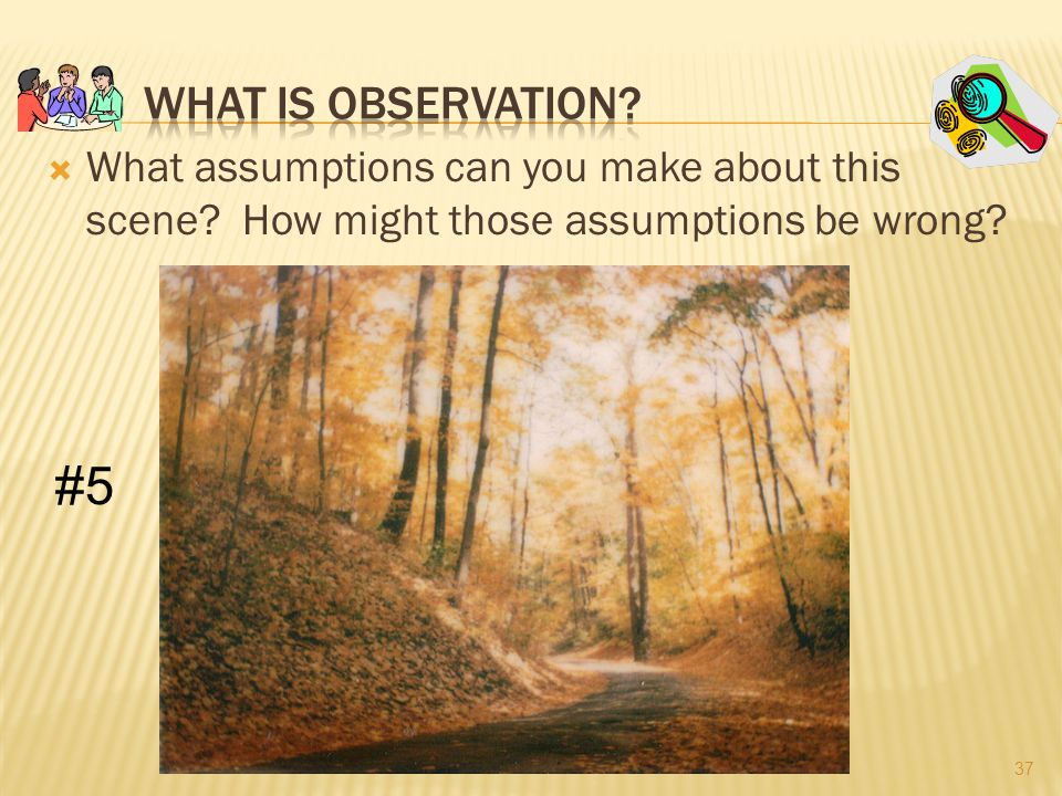 What Is Observation What assumptions can you make about this scene How might those assumptions be wrong
