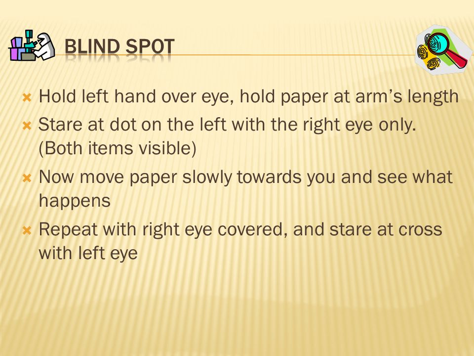 Blind Spot Hold left hand over eye, hold paper at arm's length