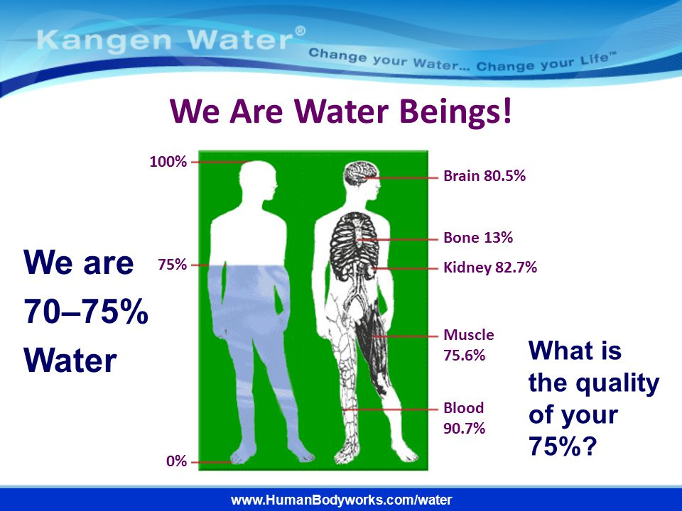 We Are Water Beings! We are 70–75% Water
