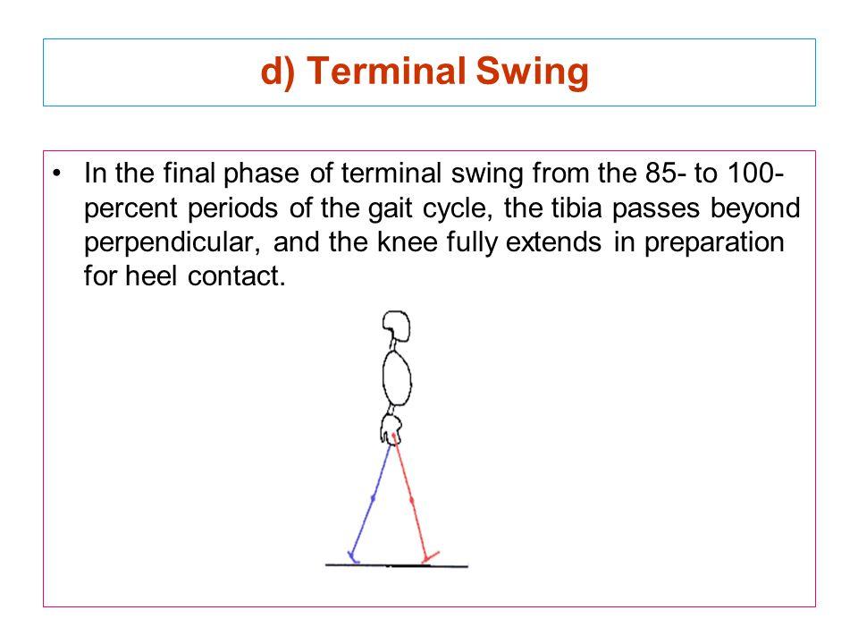 d) Terminal Swing