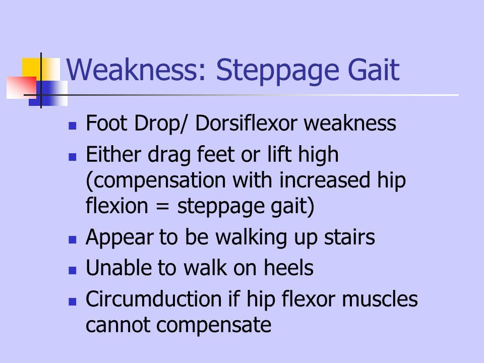 Weakness: Steppage Gait